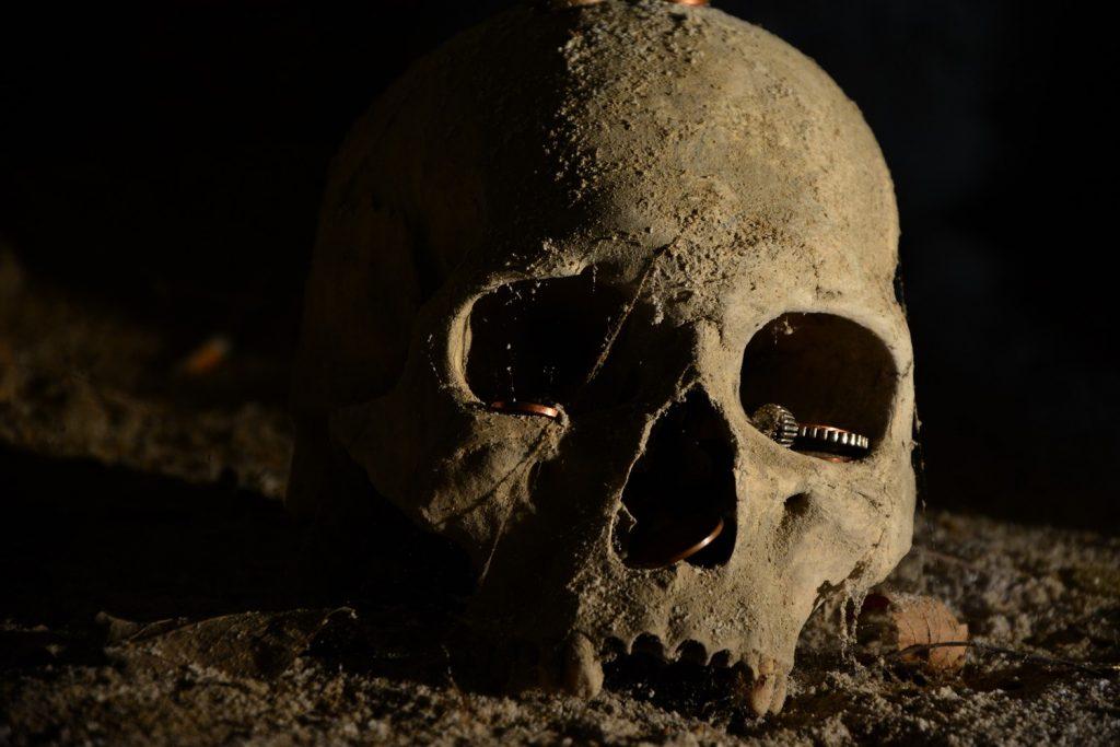 fontanelle neapol czaszki