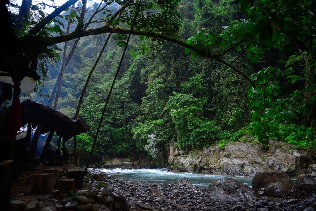 trekking z orangutanami obozy w dżungli nad rzeką sumatra bukit lawang