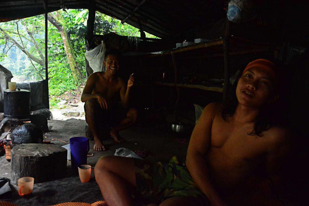 bukit lawang trekking z orangutanami przewodnicy