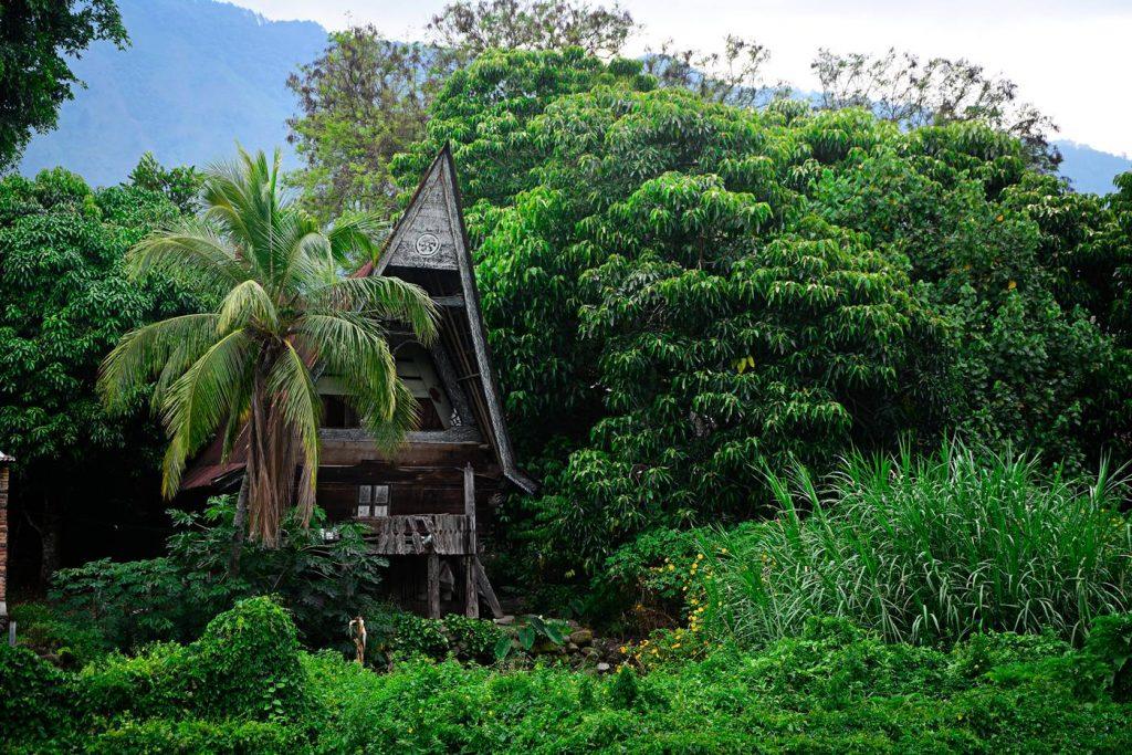 noclegi samosir batak dom batak house