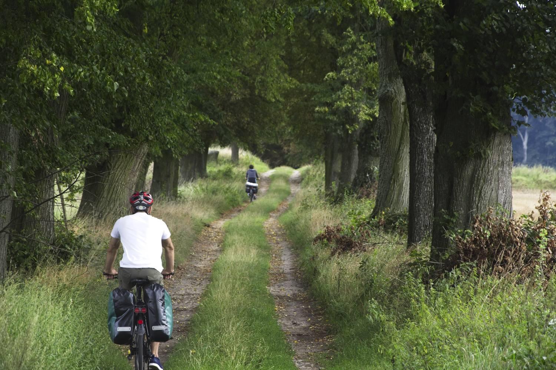 trasa rowerowa do zamku w szymbarku rowerem do szymbarku z iławy lesne dukty