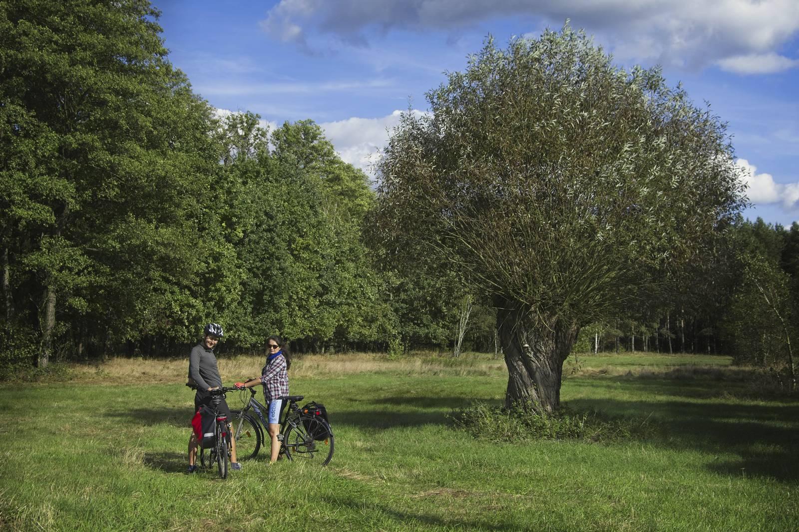 kampinos puszcza kampinoska gdzie na rower w okolicach warszawy wierzba szlaki rowerowe wokol warszawy