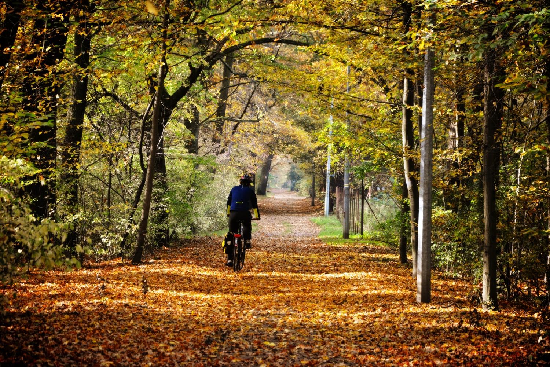 dokad jechac jesienia podkowa lesna ulica jeżynowa gdzie na rower w okolicach warszawy sciezki rowerowe wokol warszawy