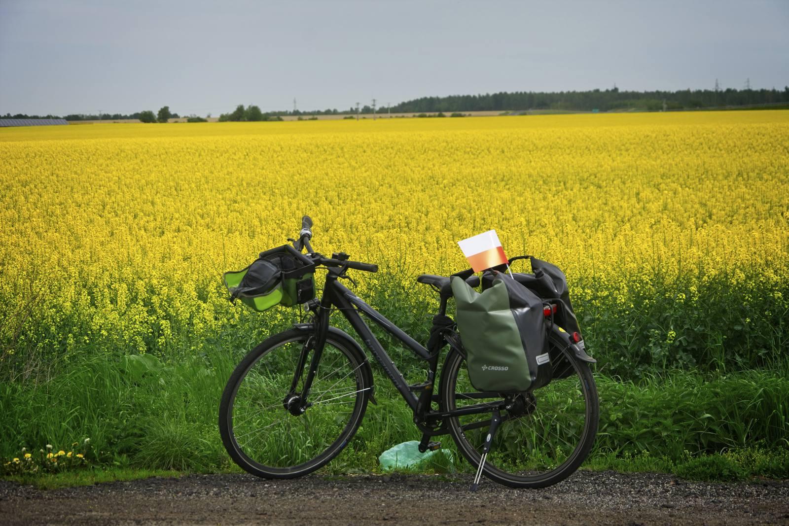 co zabrac na wycieczkę rowerową jak się zapakować na wycieczkę rowerową sakwy rowerowe jakie sakwy wybrać