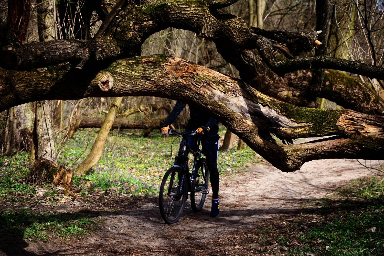 gdzie na rower w okolicach warszawy sciezki rowerowe wokol warszawy jozefow otwock