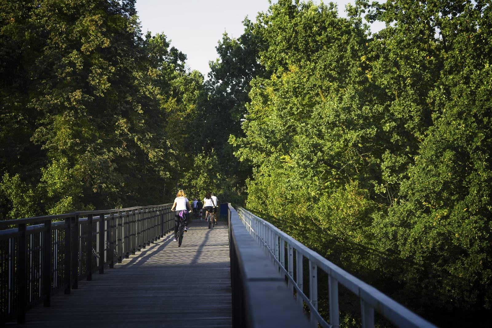 most w koronowie trasa rowerowa bydgoszcz koronowo jezioro koronowskie rowerem