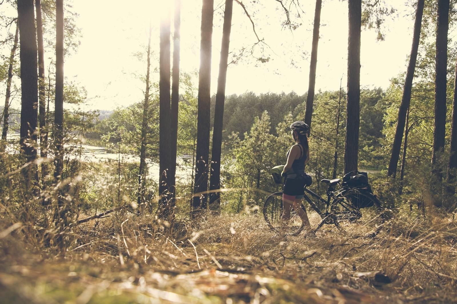 trasa rowerowa wokol jeziora koronowskiego petla wokol jeziora koronowskiego trasa rowerowa bydgoszcz koronowo
