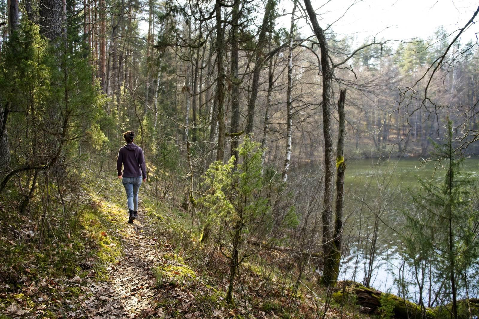 dzukijski park zervynosy jezioro w lesie