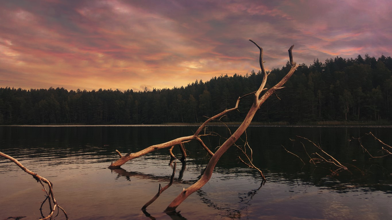 litwa Photo by Sarune Sedereviciute on Unsplash