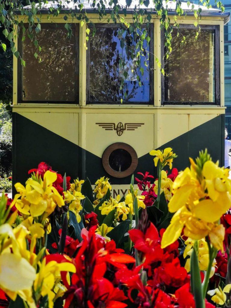 atrakcje turystyczne nyiregyhaza tramwaj ostatni tramwaj do sosto