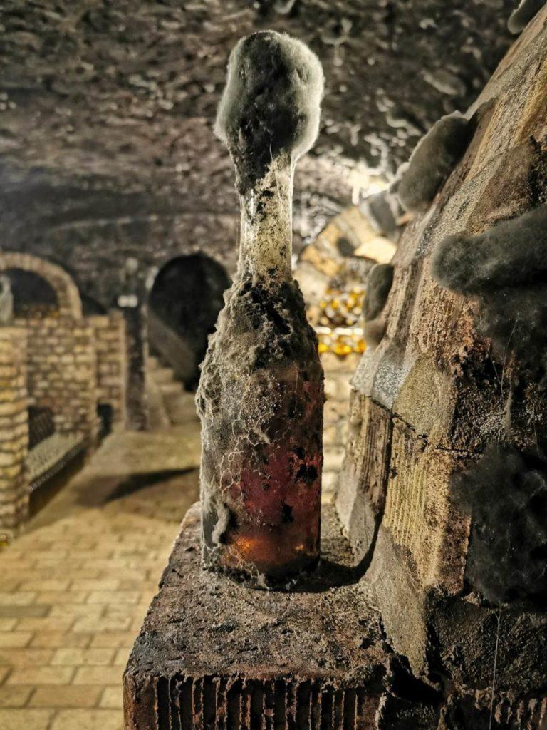 wytrawne wino w tokaju piwniczka z winem tokajski region winiarski