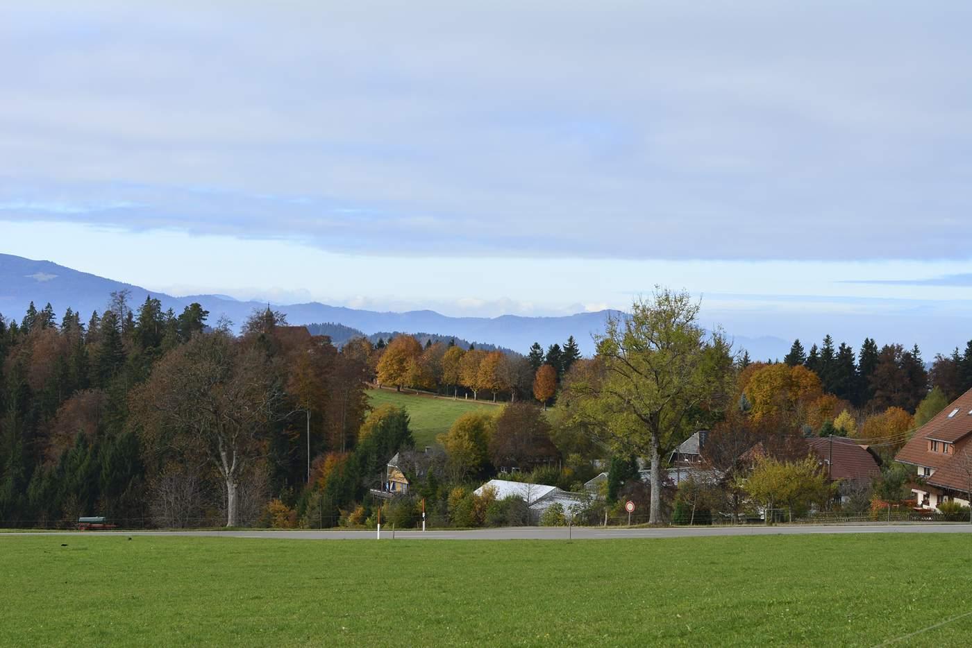dokad jechac jesienia szwarcwald niemieckie gory jesienia