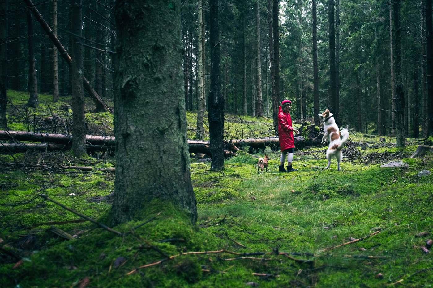 gdzie jechac jesienia lubowo powiat koszalinski okolice Koszalina