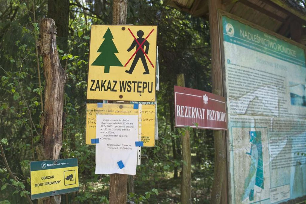 wakacje koronawirus dofinansowanie 1000 zl zamkniete lasy czy mozna podrozowac