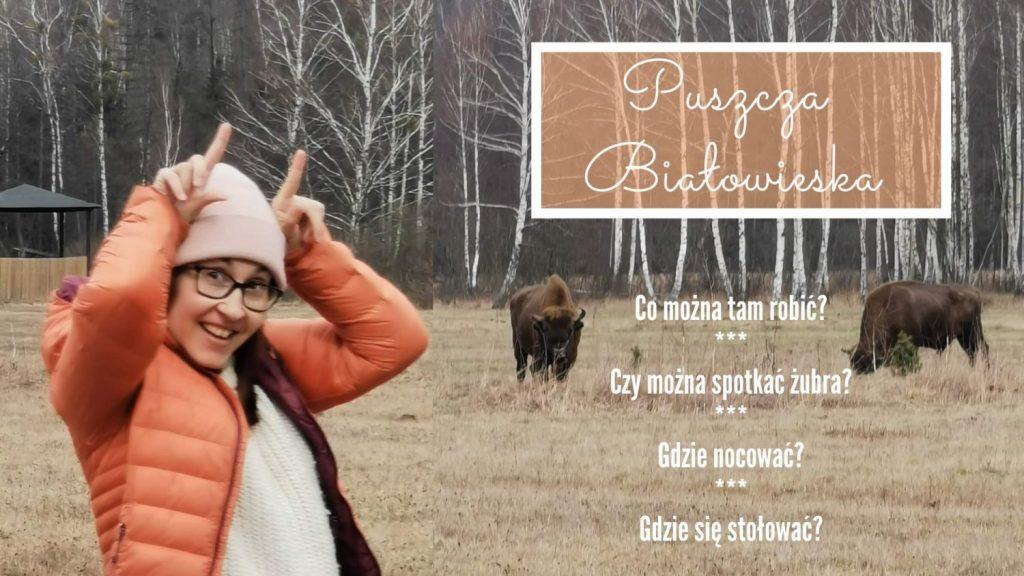 co robic w bialowiezy puszcza bialowieska atrakcje turystyczne szlaki piesze w bialowiezy