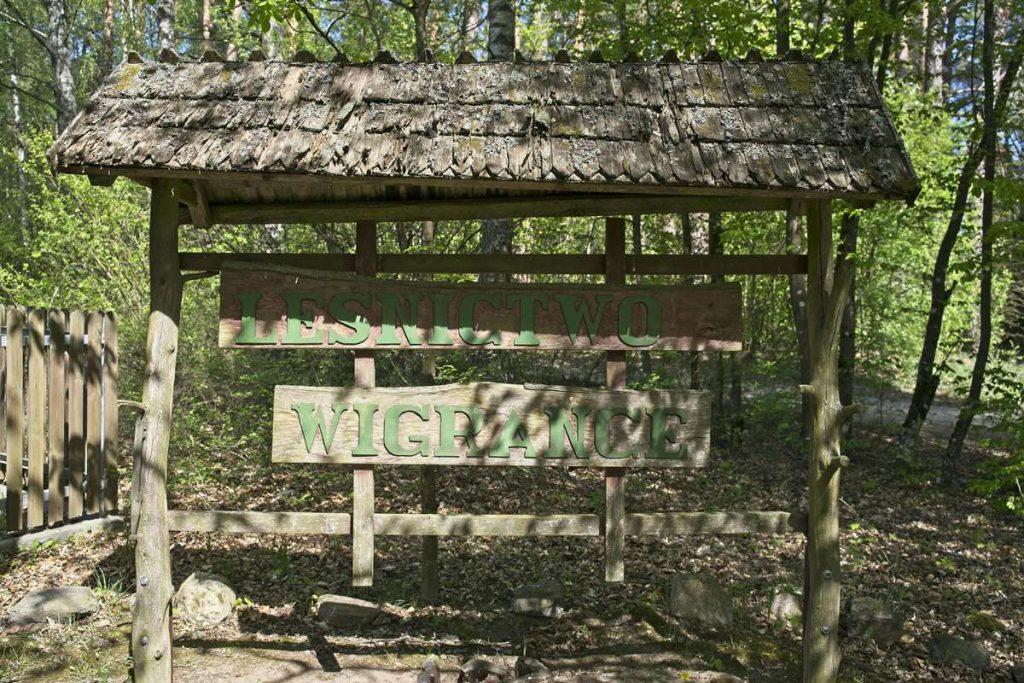 lesnictwo wigrance rezerwat lempis parking gdzie zostawic samochod gdzie zaczyna sie szlak