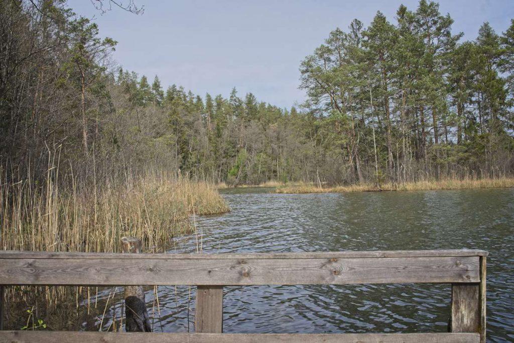 rezerwat łempis maj giby jeziora zelwa rezerwat łempis szlak