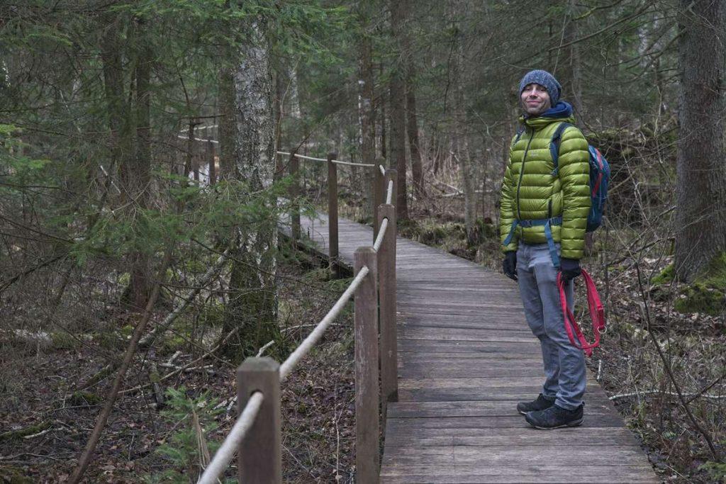 zebra zubra co robic w bialowiezy piesze szlaki w puszczy bialowieskiej