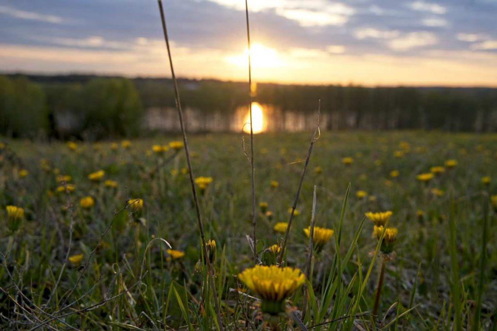 jezioro galadus granica z litwa co zobaczyc w okolicach sejn