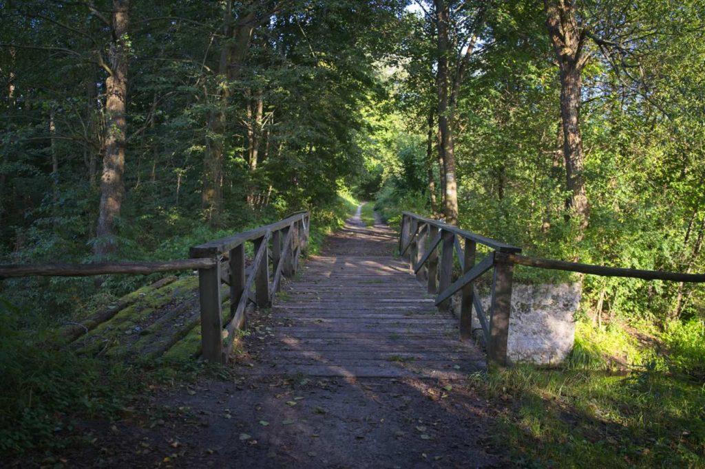 most kajzerowka kociolki kozienice puszcza kozienicka gdzie na spacer w puszczy kozienickiej