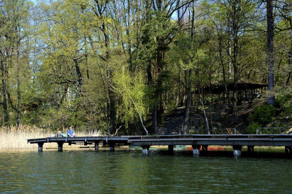 ryte błota pojezierze brodnickie brodnicki park krajobrazowy gdzie nad jezioro
