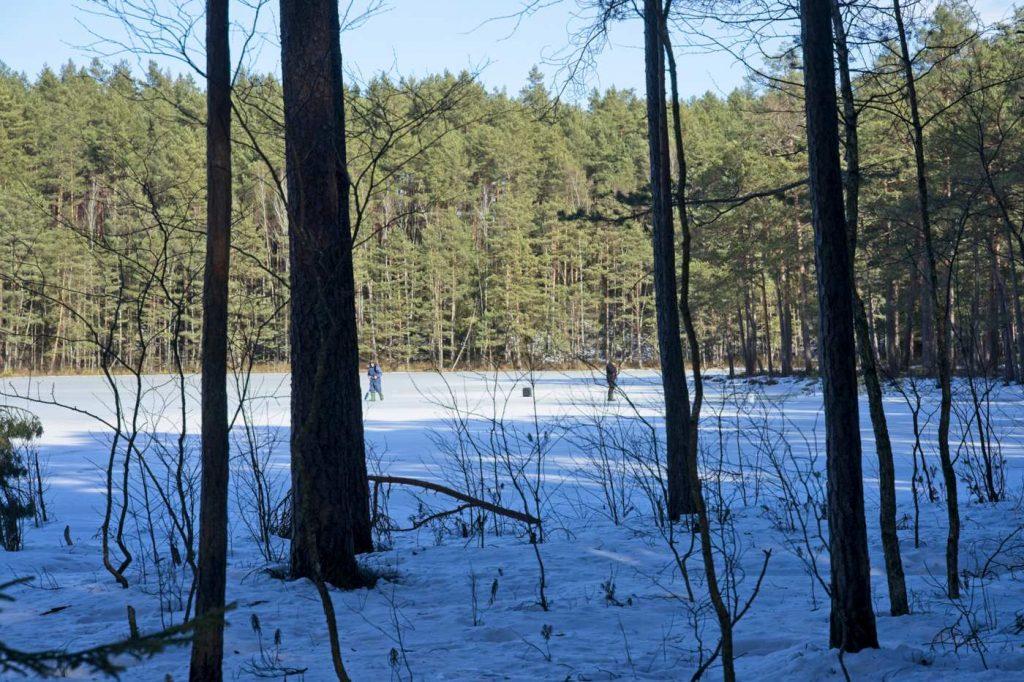 rezerwat tobolinka zima okolice jeziora zelwa