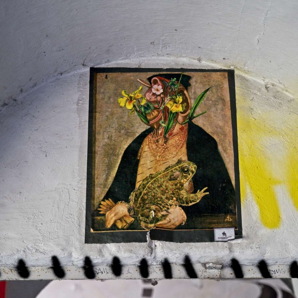 forty bema w środku wnetrze budynkow fortu obraz kobieta z kwiatami i ropucha