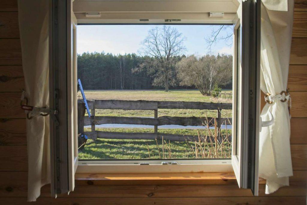 widok z okna na las domek blisko warszawy chata