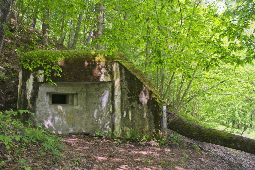 bunkry brodnicki park krajobrazowy