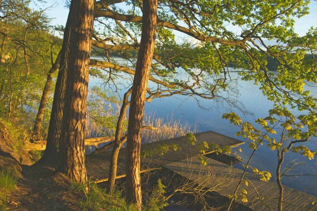 jezioro zbiczno ryteblota pojezierze brodnickie na kujawach