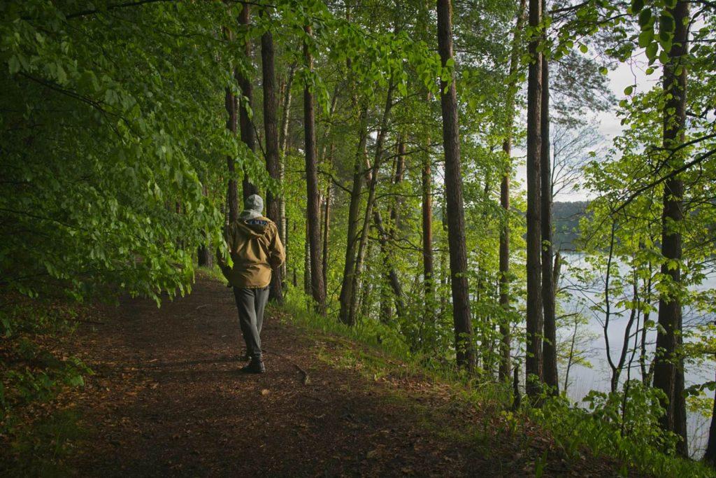 zolty szlak brodnicki park krajobrazowy rytebłota szlaki piesze